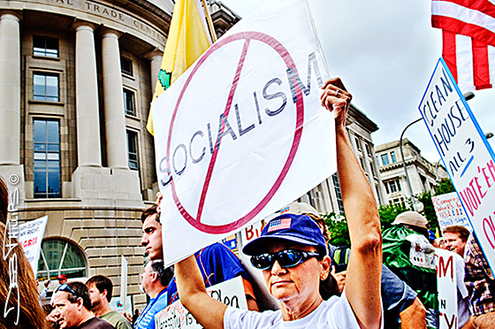 Signs addressing the disapproval of socialism were a frequent sight at the DC Tea Party March.