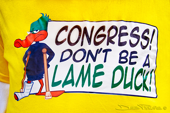 """Congress, Don't be a Lame Duck"" sign at the November Speaks Rally in Washington, DC on November 15, 2010"