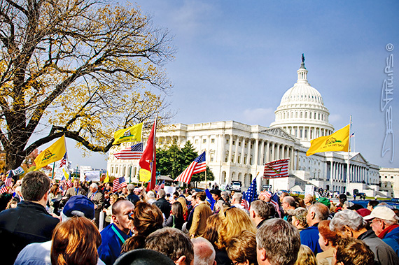 A view of the November Speaks Rally crowd with the U.S. Capitol in the background.